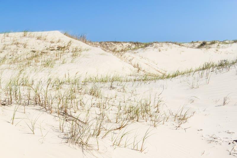 Vegetatie over duinen bij Torres-strand royalty-vrije stock fotografie