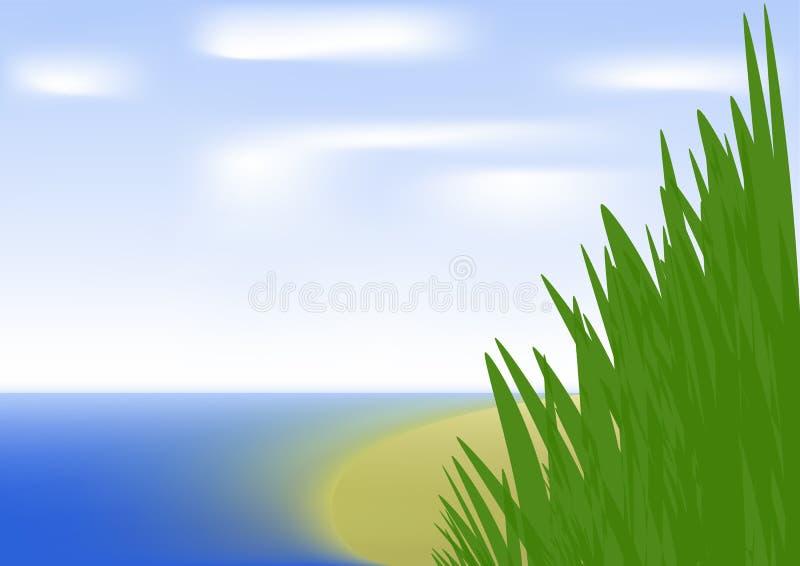 Vegetation auf Ufer lizenzfreie abbildung