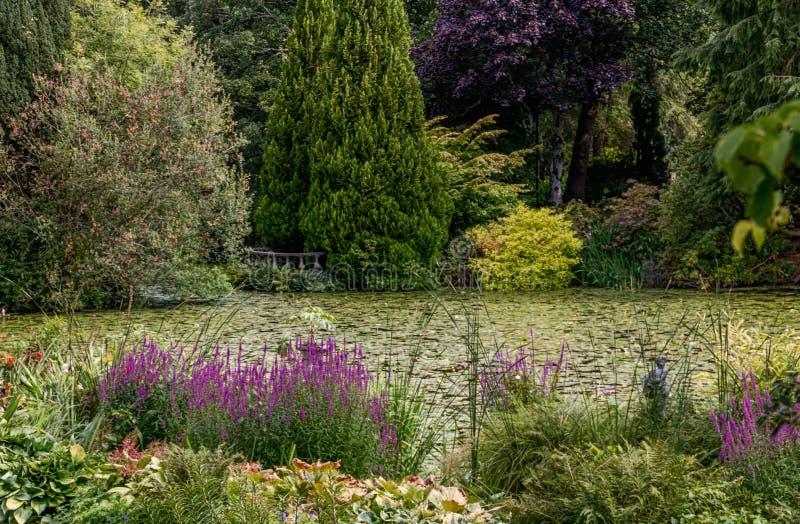 Vegetation, Garden, Botanical Garden, Plant stock photos
