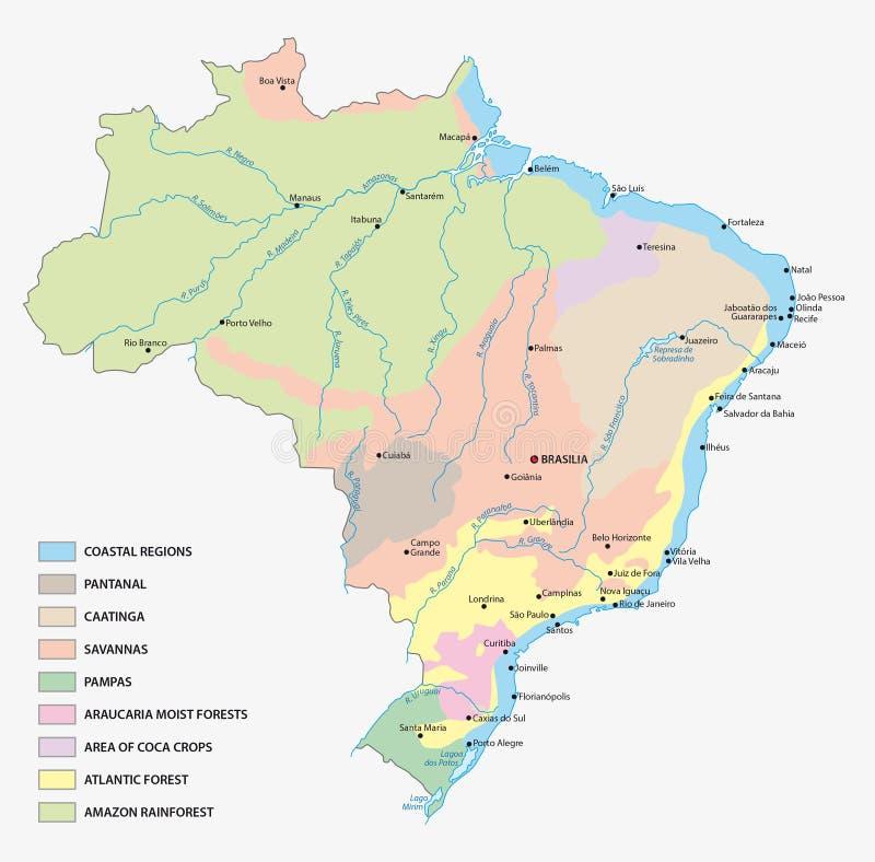 Vegetation map Brazil stock illustration Illustration of vector