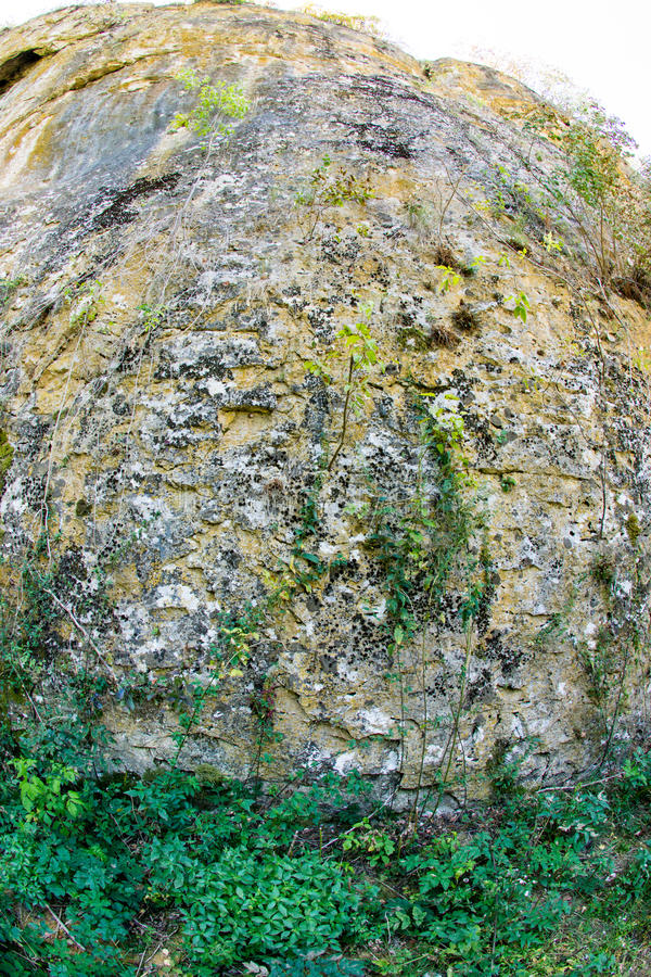 Vegetation on the rocks Devetakskoy cave, Bulgaria stock photo