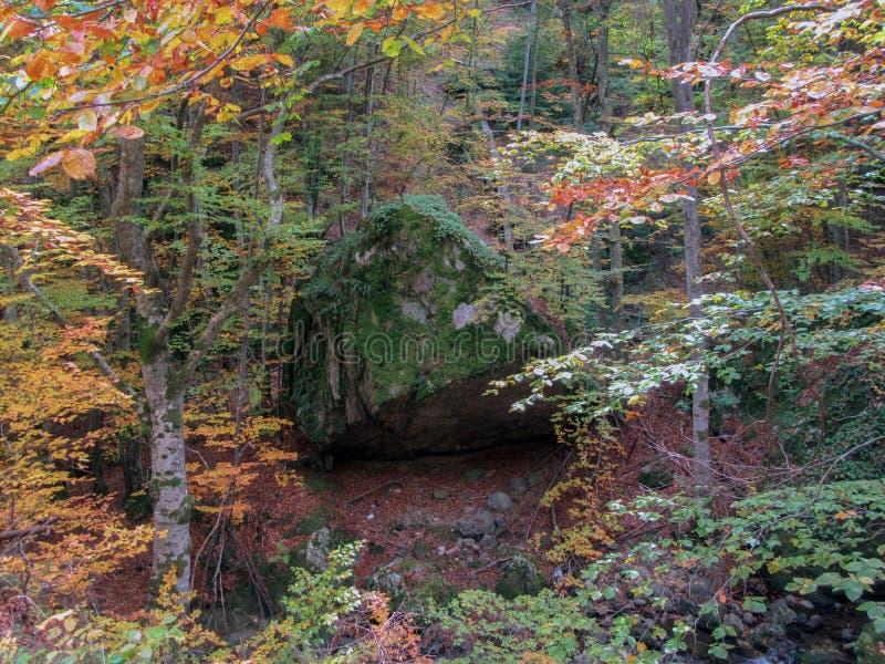 Colorful autumn landscape in Rhodope Mountain, Bulgaria. ` stock photo