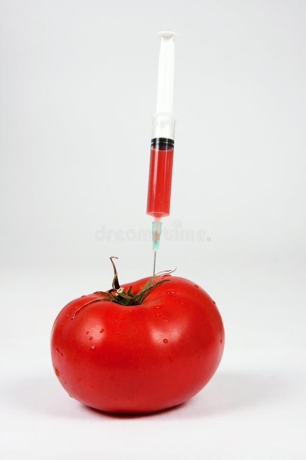 Vegetazione genetica fotografie stock libere da diritti