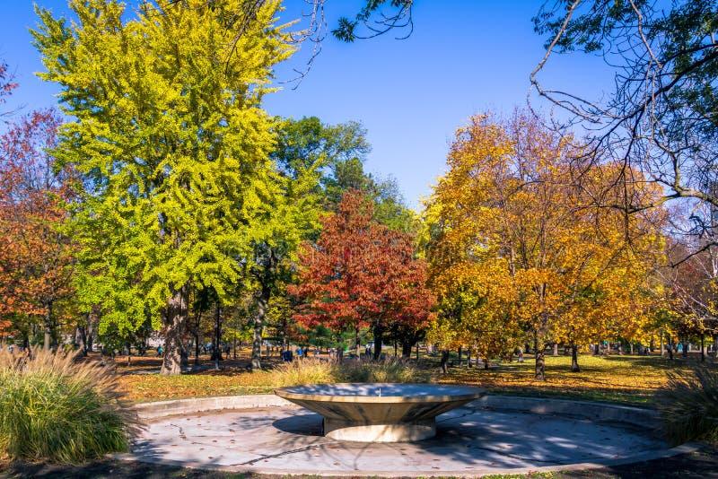 Vegetazione variopinta di autunno del parco del Queens - Toronto, Ontario, Canada fotografie stock