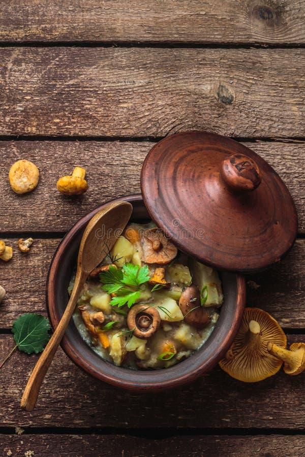 Vegeterian potatis och champinjonragu i en lerakruka, kopieringsutrymme royaltyfria foton