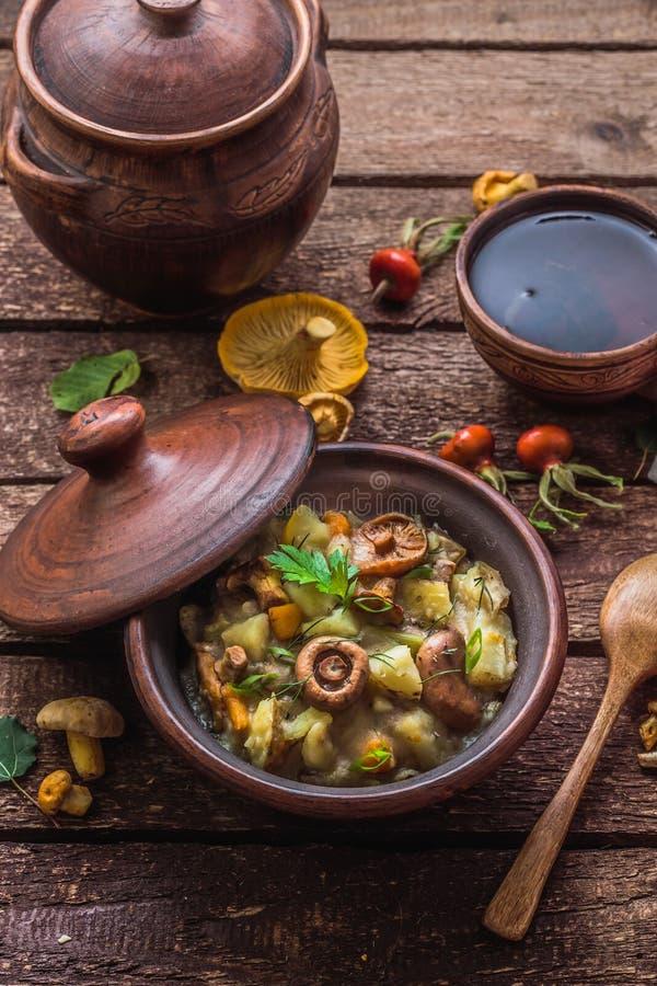 Vegeterian ragu med potatis- och skogchampinjoner, lantlig stil fotografering för bildbyråer
