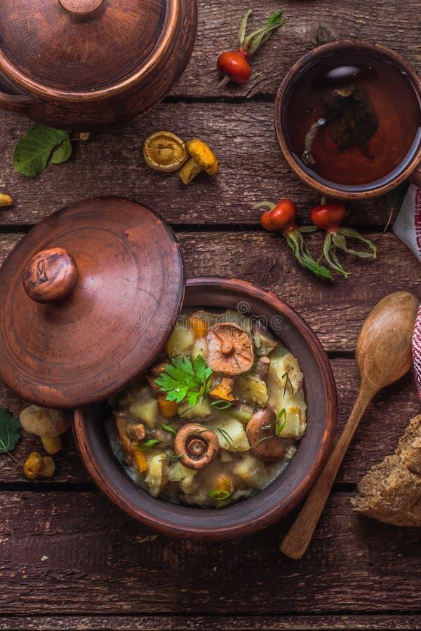 Vegeterian ragu med potatis- och skogchampinjoner, lantlig stil royaltyfri foto