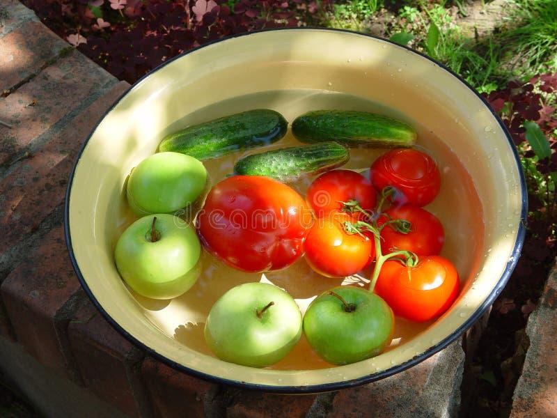 Veggie bowl stock images