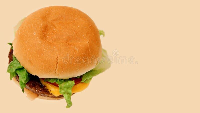 Veggie Burger 2 Free Stock Image