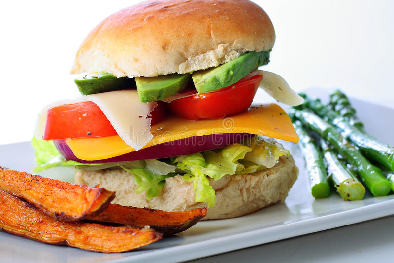 Download Veggie Burger With Sweet Potato Fries Stock Image - Image: 11107327
