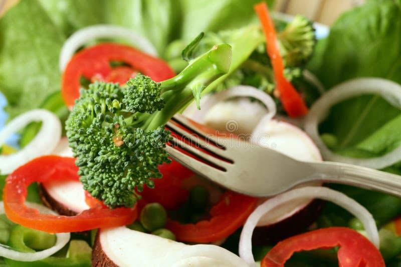 Veggie salad. Detailed shot of fresh veggie salad royalty free stock photography