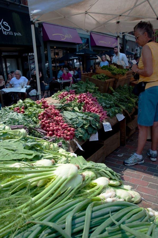 veggies свежего рынка s хуторянина стоковые фотографии rf