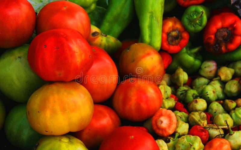 Veggies stock photo