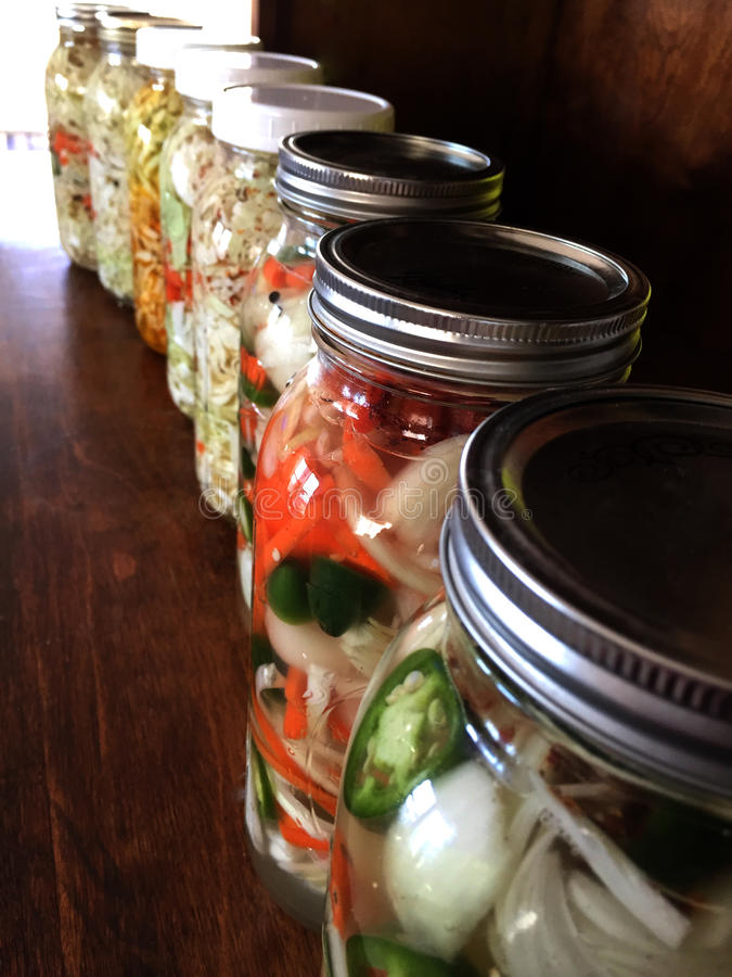 Veggies de fermentation photos libres de droits