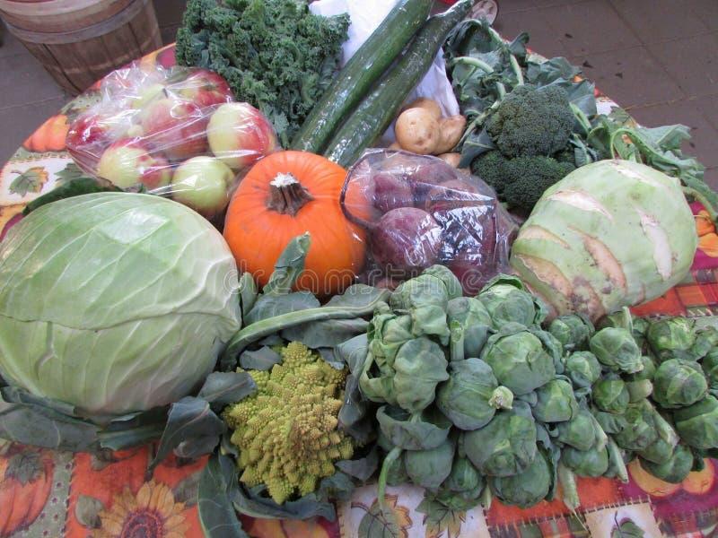 Veggies. Fresh veggies from the garden vegetables ready to eat stock image