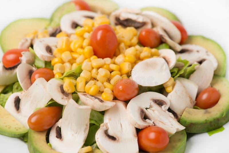 Veggies Sałatkowi z Avocado zdjęcie royalty free