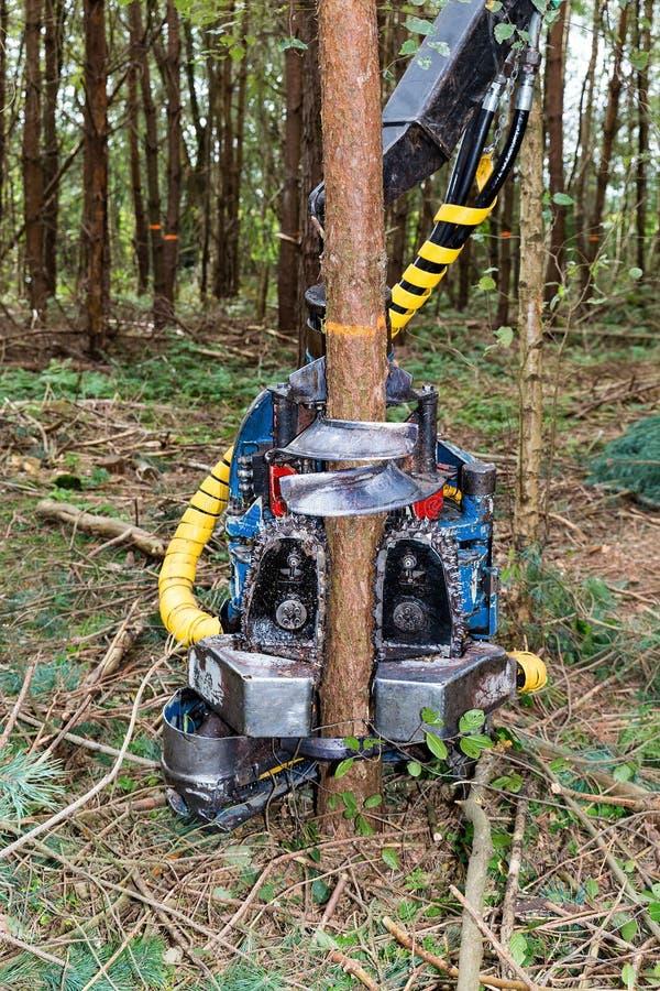 Vehículo con el árbol de corte de la motosierra imagenes de archivo