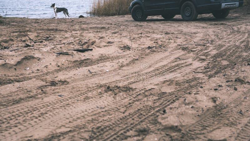Vehículos campo a través no identificados durante un safari del desierto - vintage f imágenes de archivo libres de regalías