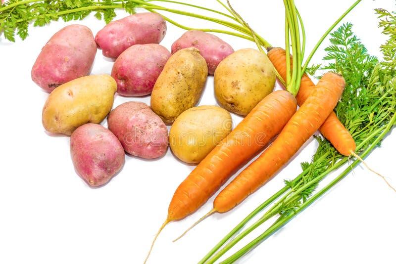 Vehículos de la cosecha en un fondo blanco Patatas, zanahorias fotos de archivo