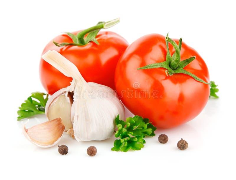Vehículos del tomate y del ajo con la especia del perejil fotografía de archivo