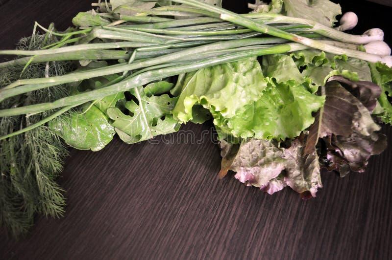 Veh?culos verdes Fije de diversas verduras verdes estacionales fotos de archivo libres de regalías