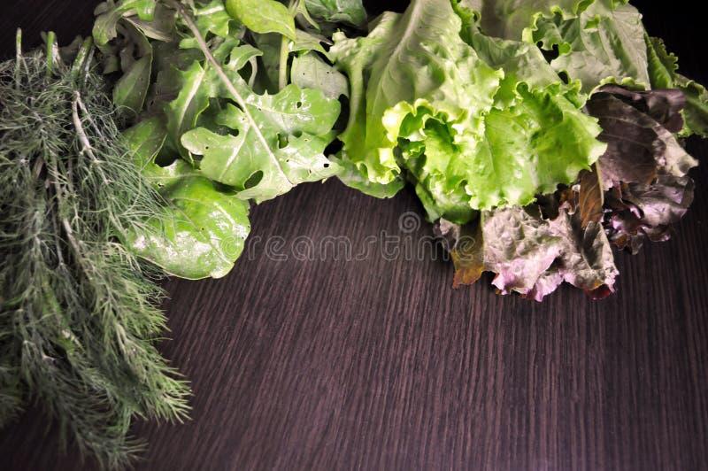 Veh?culos verdes Fije de diversas verduras verdes estacionales imagen de archivo libre de regalías