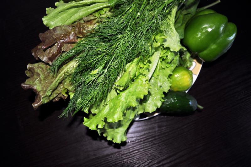 Veh?culos verdes Fije de diversas verduras verdes estacionales imágenes de archivo libres de regalías