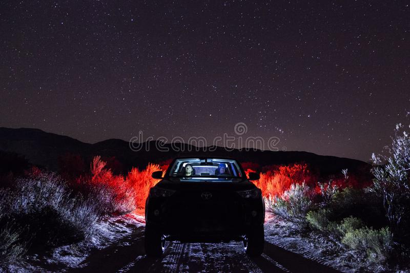 Vehicle on Road Along Green Grass during Night royalty free stock image
