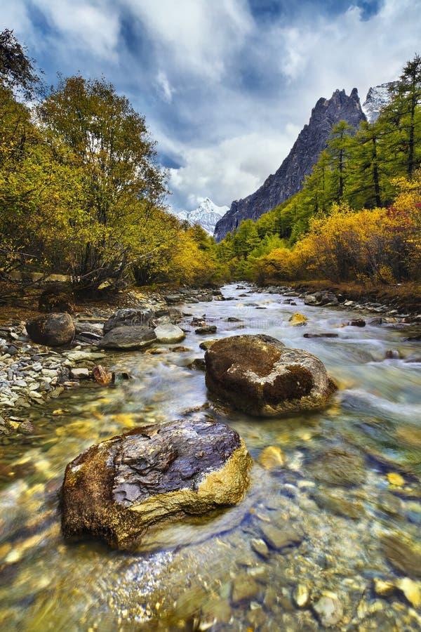 Veia do rio da montanha fotografia de stock royalty free