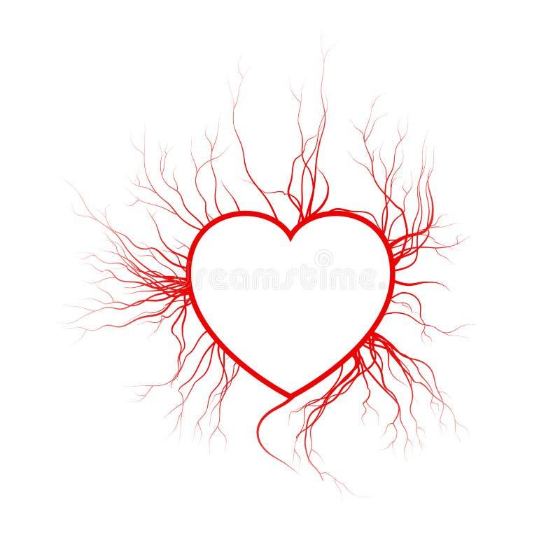 Veias humanas com coração, projeto vermelho do Valentim dos vasos sanguíneos do amor Ilustração do vetor isolada no fundo branco ilustração do vetor