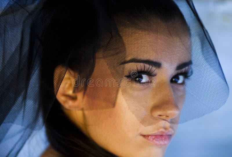 Download Veil portrait stock image. Image of attractive, beautiful - 11994091