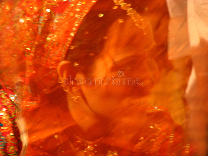Download Veil Smile stock photo. Image of smile, expressions, hindu - 4834048
