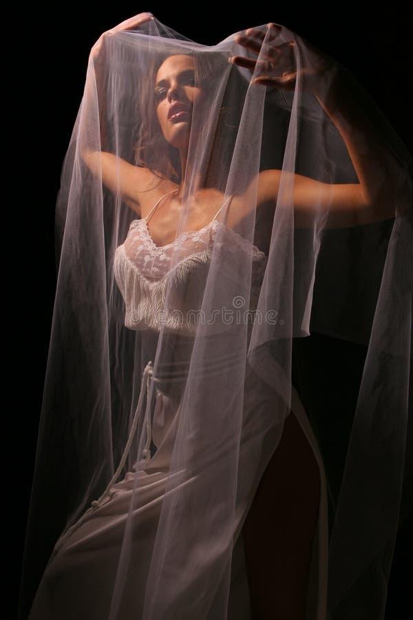 Veil3 γάμος Στοκ Εικόνα