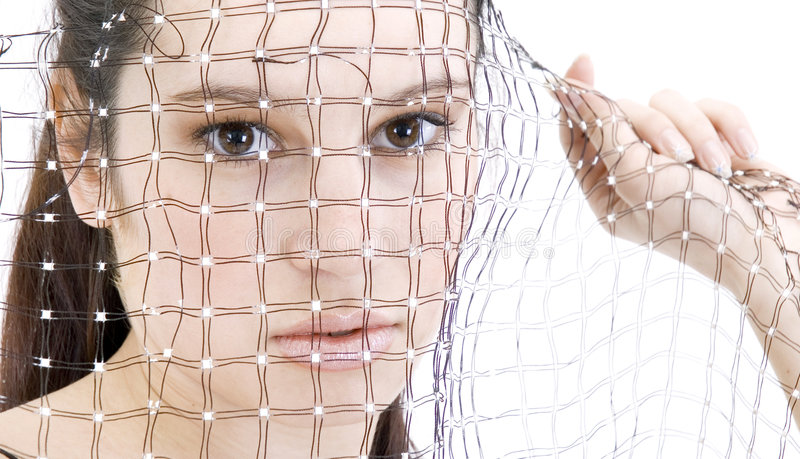 Download Veiled Beauty Stock Image - Image: 689741
