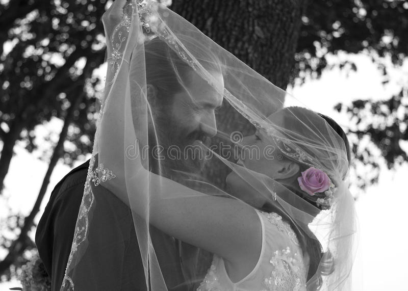 Veiled Love royalty free stock photos