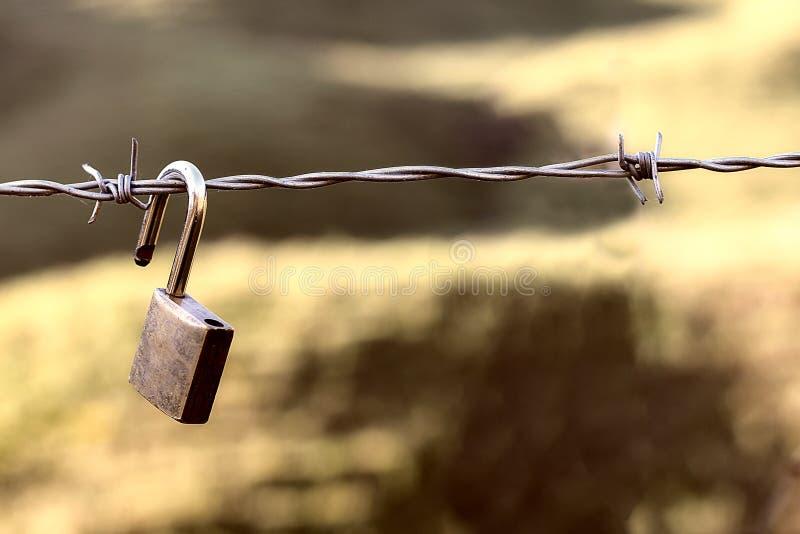 Veiligheid en huisbescherming en digitale gegevensbescherming stock fotografie