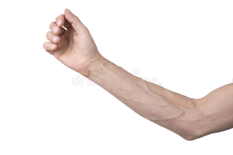 Veins on an arm royalty free stock images