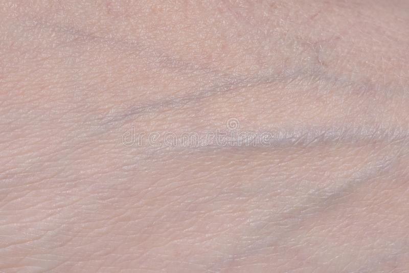 Veins on the skin. Human skin close-up royalty free stock image