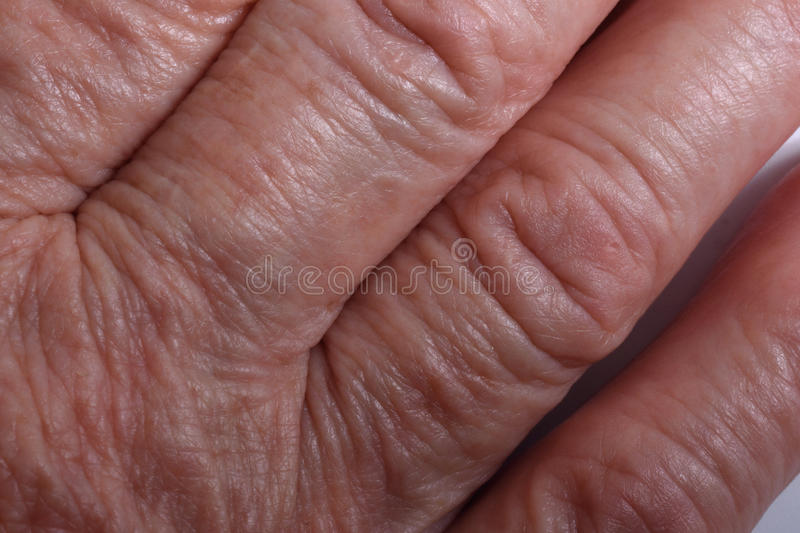 Veins. On the wrist of an older woman royalty free stock photos