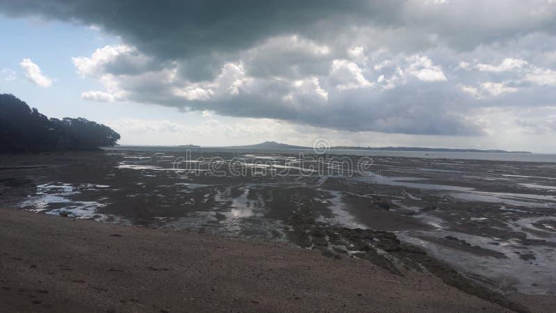 Veiws побережья Новой Зеландии стоковые изображения rf