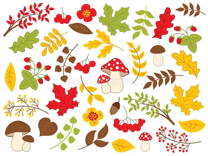 Vektor Autumn Forest Set mit Erdbeeren, Pilzen, Blättern und Blumen vektor abbildung