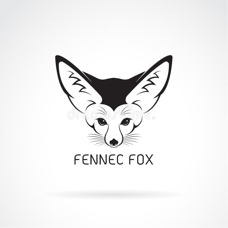 Vektor av det Fennec rävhuvudet på en vit bakgrund vektor illustrationer