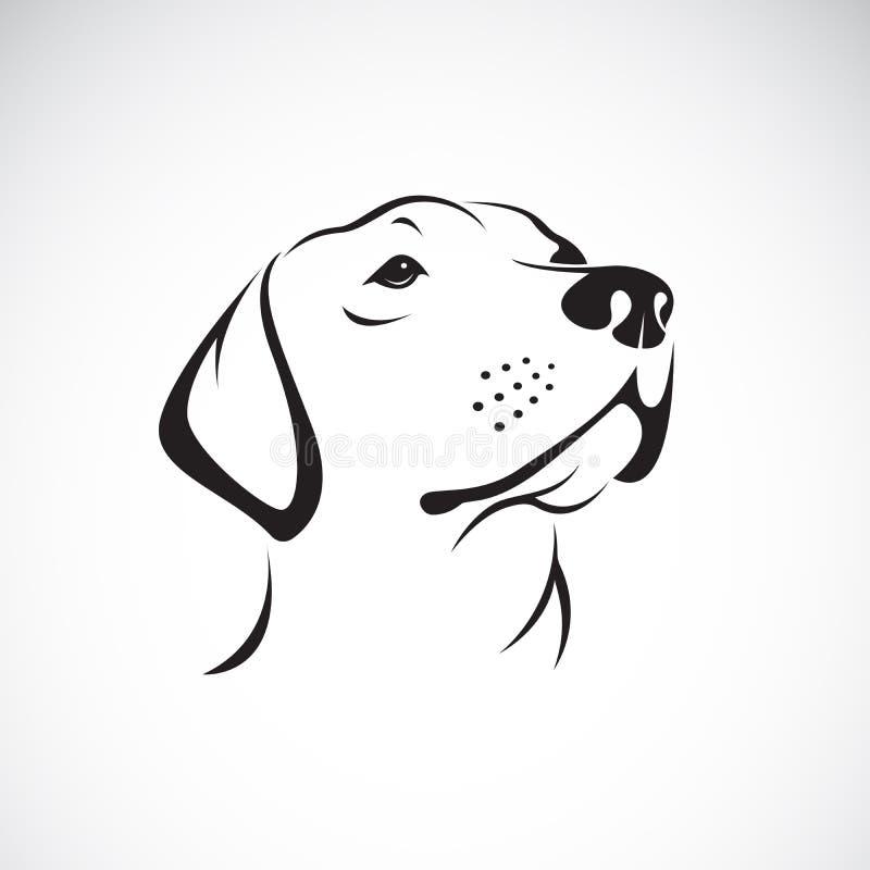 Vektor av en hundheadLabradorapportör på vit bakgrund royaltyfri illustrationer