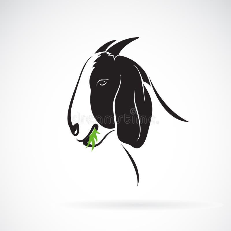 Vektor av gethuvudet som äter gräs på vit bakgrund anhydrous Lätt redigerbar i lager vektorillustration stock illustrationer