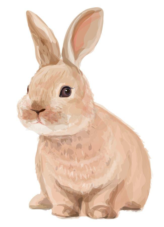 Vektor av gullig kanin som isoleras på vit bakgrund royaltyfri illustrationer