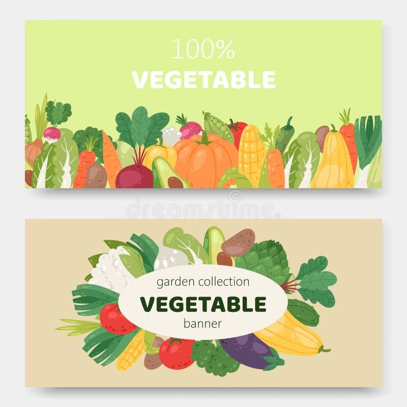 Vektor-Vektor-Banner für Gartenökogemüse Ökologisch-ökologisch erzeugte Lebensmittel Cartoon avocado, Mais, Squash vektor abbildung