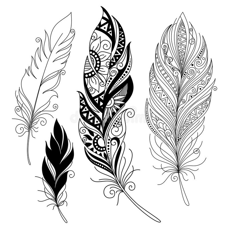 Vektor-beispiellose dekorative Feder stock abbildung