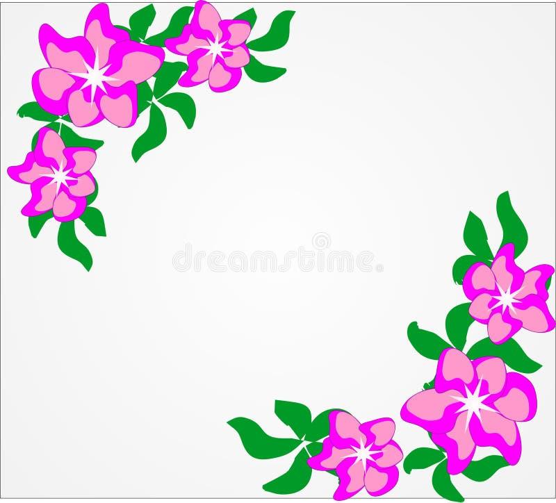 Vektor blommor, sommar, blom- bakgrund, ljusa färger, abstraktion för en blom- bakgrund arkivfoto