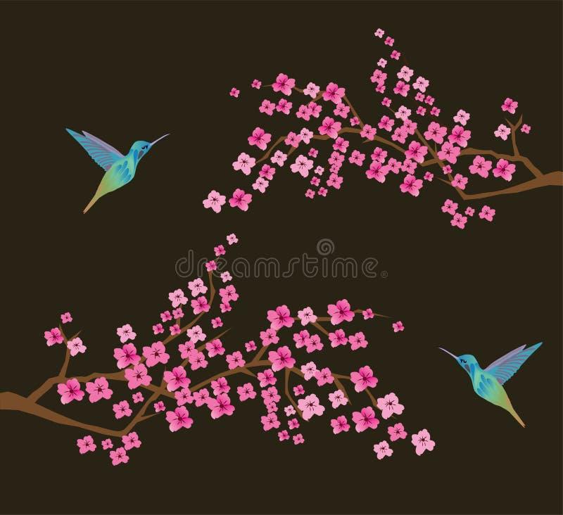 Vektor Cherry Blossom Branches With Hummingbirds stock illustrationer