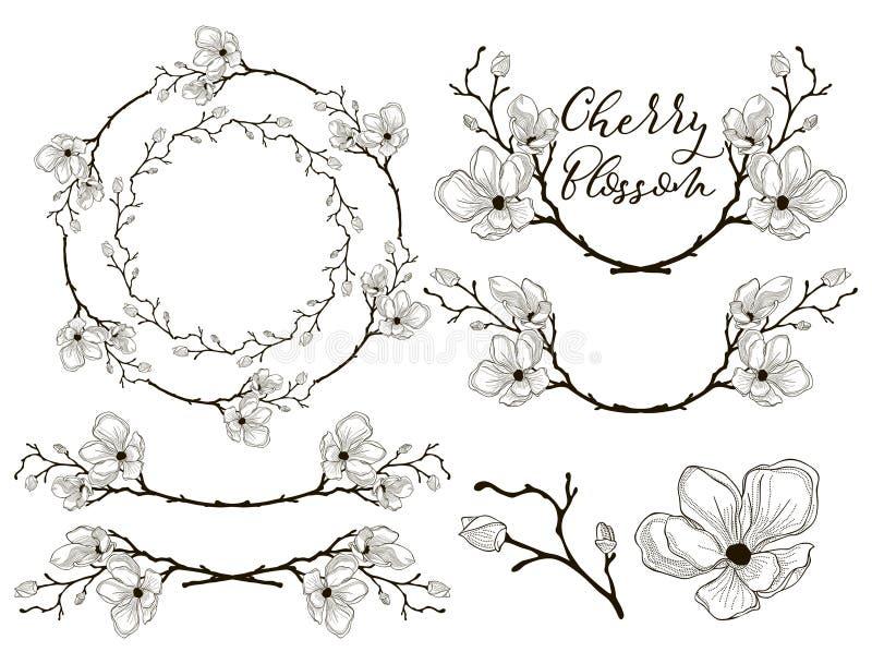 Vektor Cherry Blossom Design Avdelare, ramar och kransar vektor illustrationer